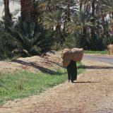 Maroc_MA11CL