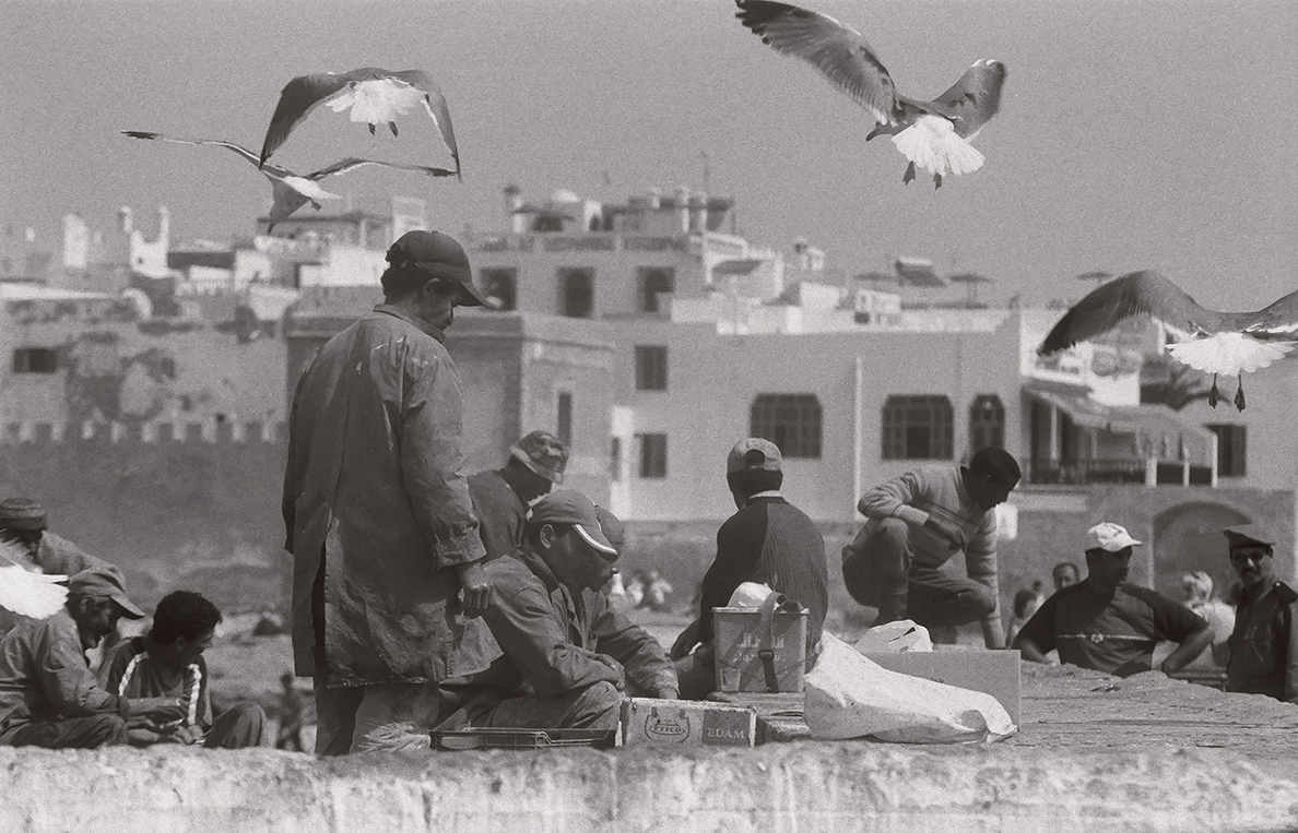 Maroc_MA11NB