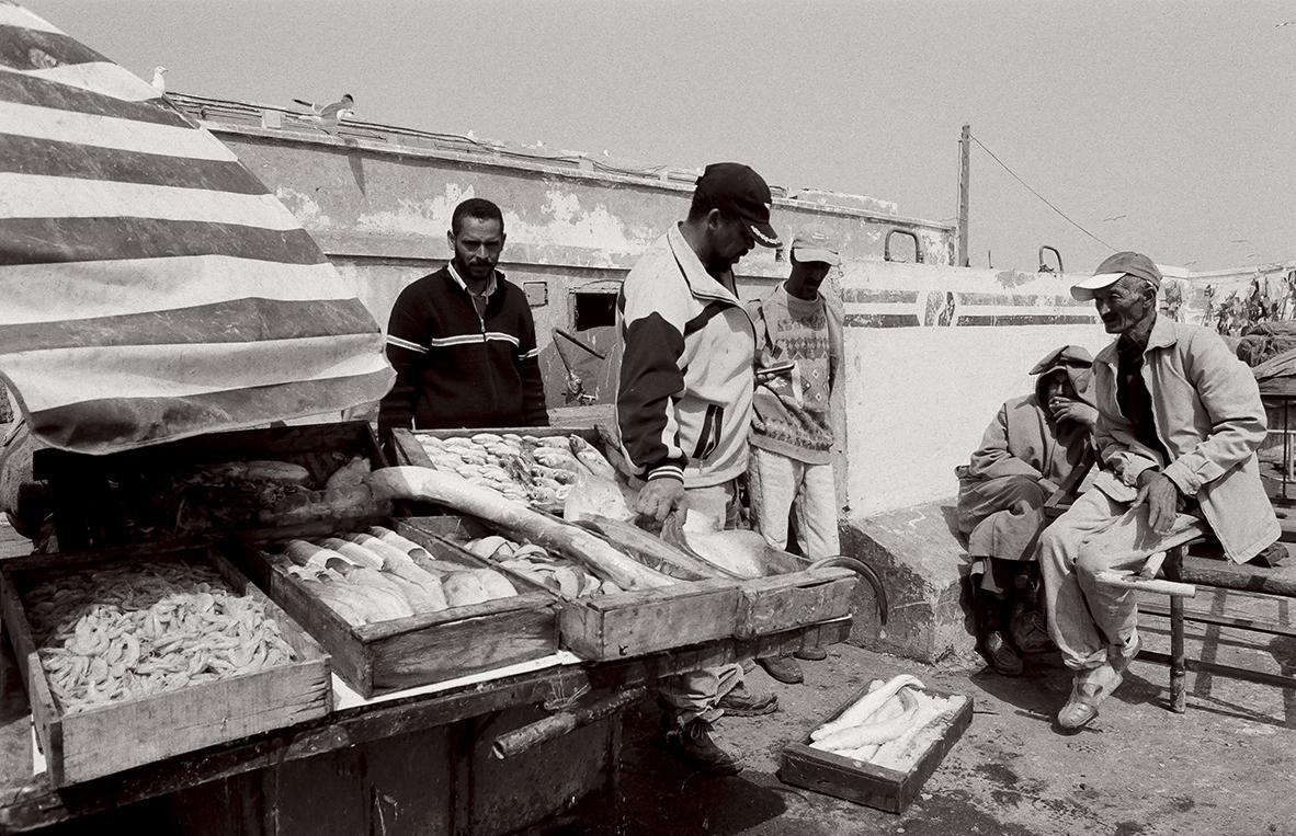 Maroc_MA13NB