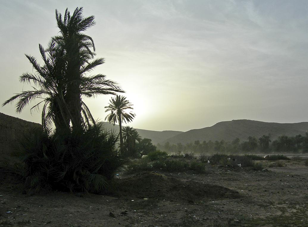 Maroc_MA8CL