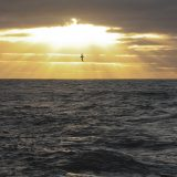 Okeanos_OK20CL