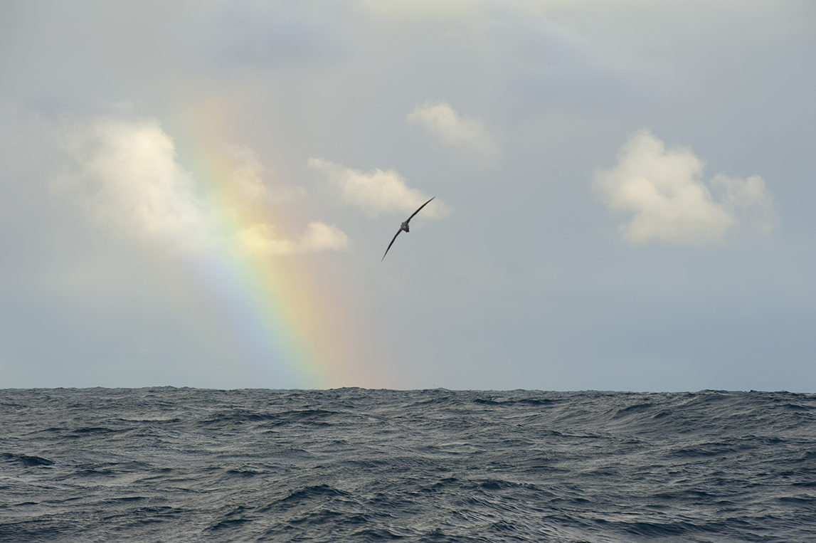 Okeanos_OK2CL