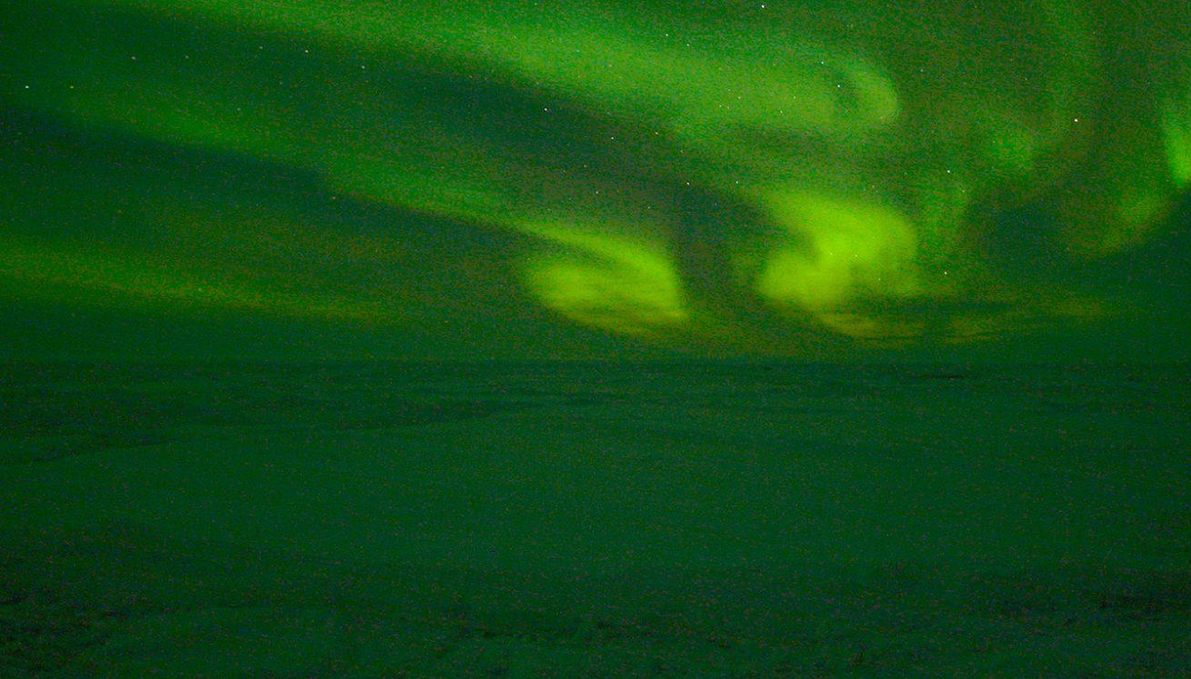 Tara-Arctic_TA11EX