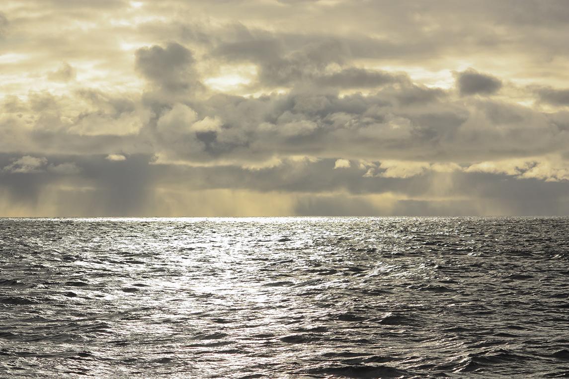 Tara-Oceans-Polar-Circle_TOPC 16EX